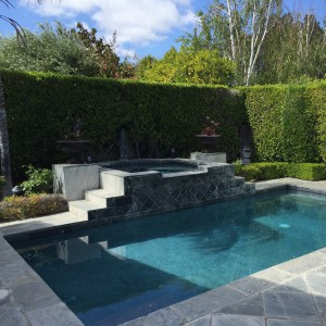 Pool with raised jacuzzi. Nice slate patio with room for a table and chairs or (my personal favorite) a fire pit!