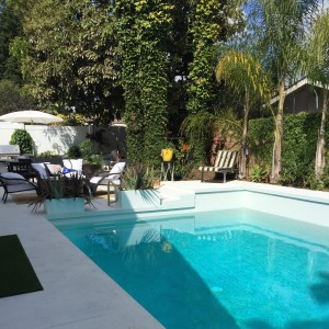 beautiful huge pool and still room for barbecue and al fresco dining.